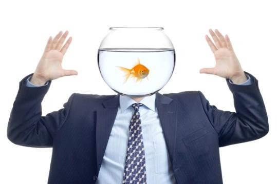 goldfish_bowl1