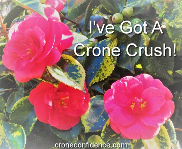 I've Got A Crone Crush