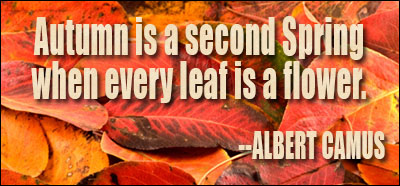 autumn_quote[1]