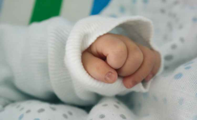hand child baby growth